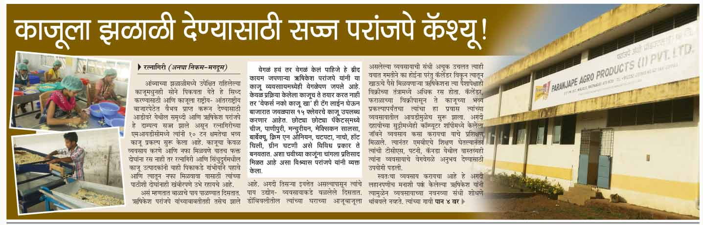 paranjape-cashew-news-lokmat-newspaper