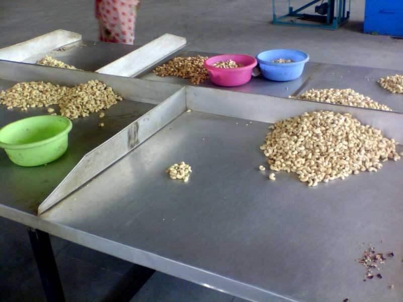 cashew_factory11