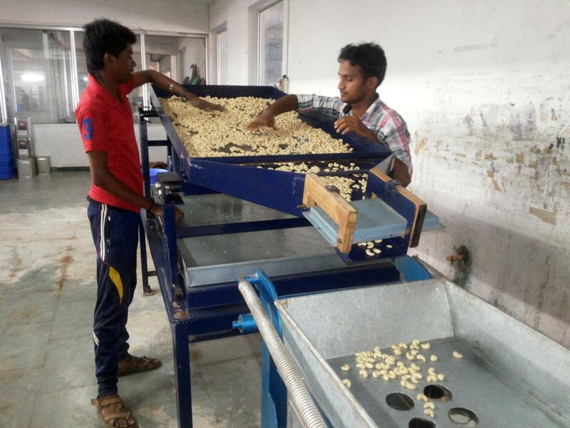 cashew_factory4-2